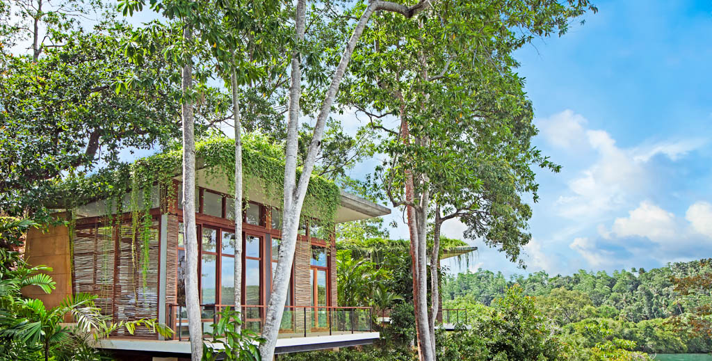Les pavillons aux lignes élégantes parviennent ainsi à ne pas bousculer le paysage ni l'écosystème du lac