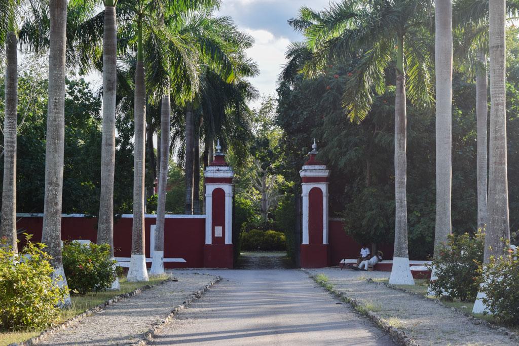 Au bout de cette allée bordée de palmiers, l'entrée de l'Hacienda Temozon © Yonder.fr