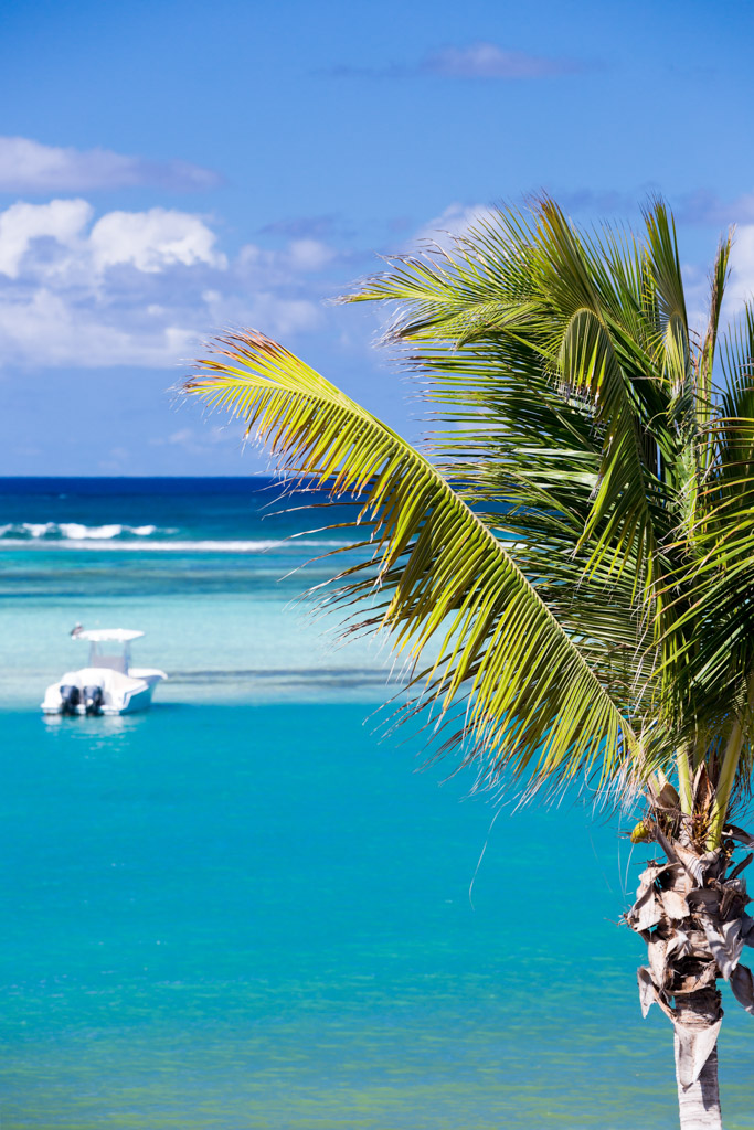 Dehors, une vaste piscine à débordement dominant la baie et ses eaux turquoise