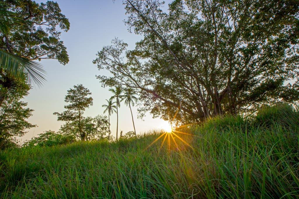 Tout autour, les paysages sauvages du sud du Sri Lanka