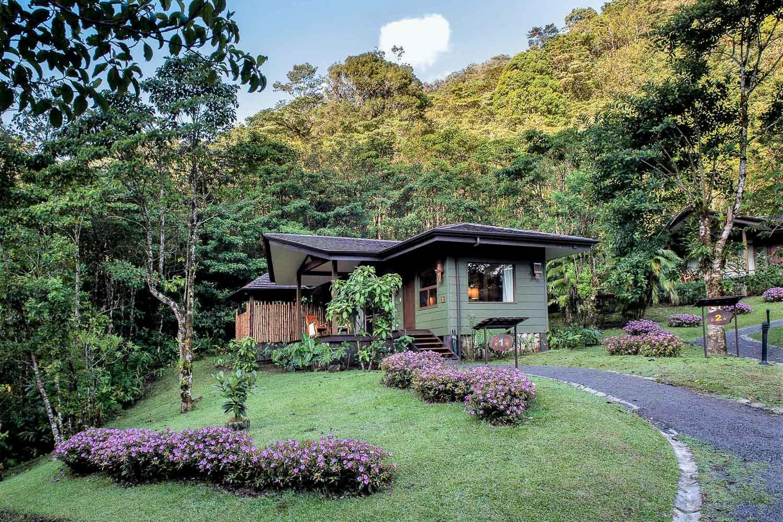 Chaque bungalow est orienté de façon à garantir intimé et vues extraordinaires sur la canopé.