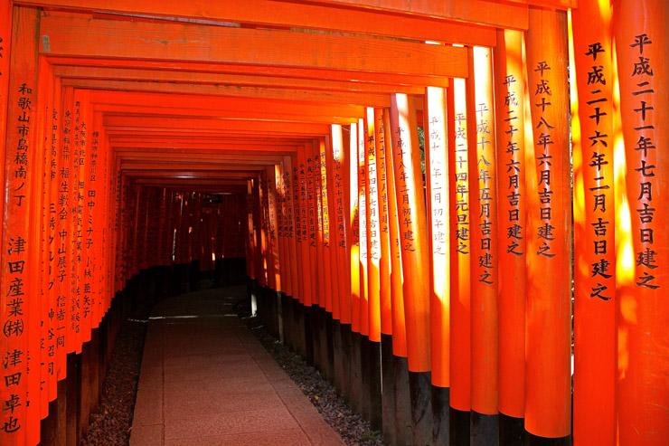 Perspective de Toriis - Sanctuaire Fushimi Inari-Taisha | © Aurélie Morin