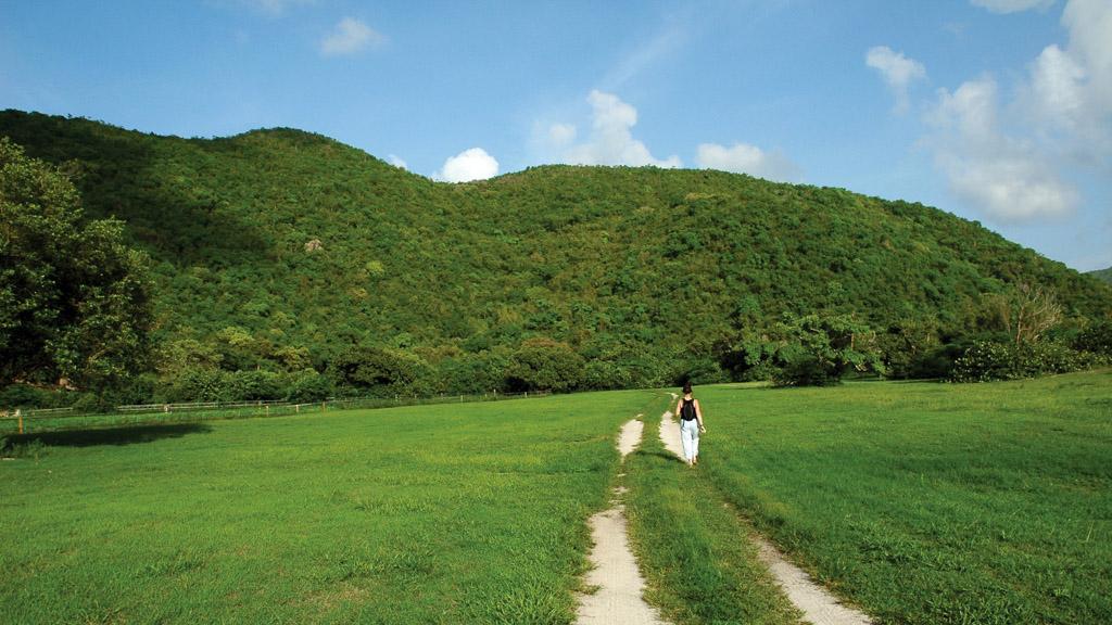 Cette île privée de 350 hectares dévoile des paysages sublimes et une nature luxuriante