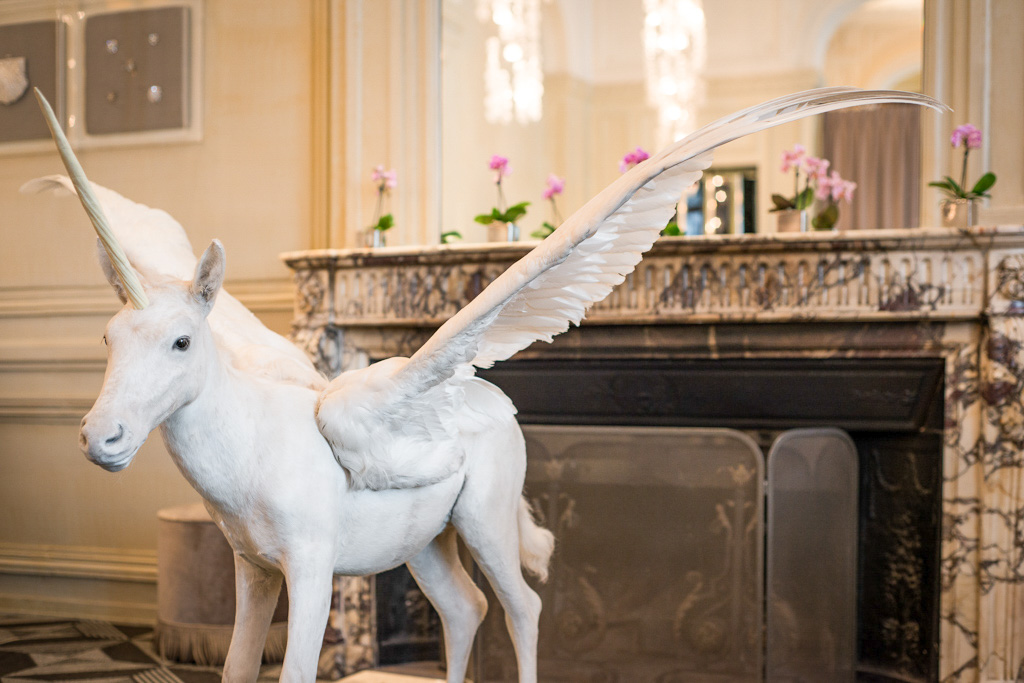 Maison Deyrolles x Trianon Palace Versailles Noël 2016