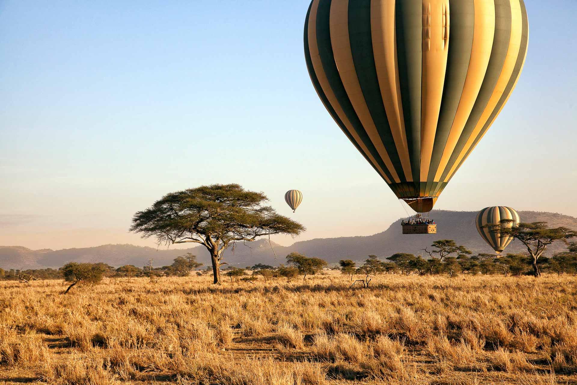 Survol en montgolfière du parc national de Serengeti © DR