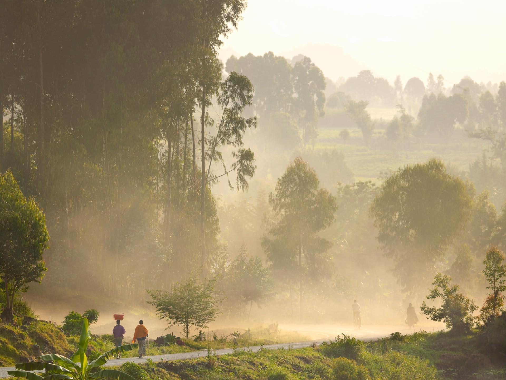 Nyungwe House - Rwanda.