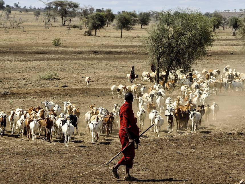 Tanzanie - Rencontre avec les Massaï © DR