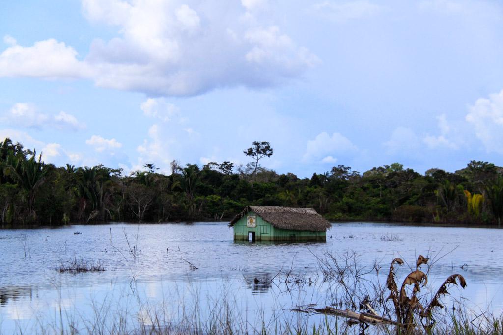 Voulant rejoindre le Brésil depuis les abords du Lac Titicaca au Pérou, Cédric Aubert nous livre un témoignage exceptionnel sur sa traversée de l'Amazonie. Un récit personnel et entier d'un périple qui oscille entre rêve et cauchemar.