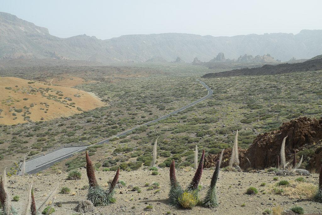 Pour beaucoup les Canaries sont synonymes de tourisme de masse dans des resorts géants. Mais faut-il être snob et les bouder pour autant ? La réponse est clairement non. Nous vous proposons 96 heures de découverte dans les paysages volcaniques de Lanzarote et de Tenerife, à la beauté parfois irréelle.