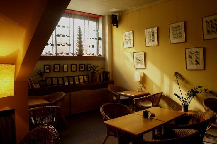 Čajovna V Síti - Le salon de thé éclairé par la lumière naturelle