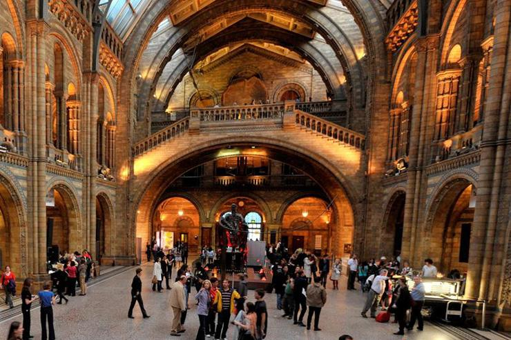 Natural History Museum - Hall d'accueil