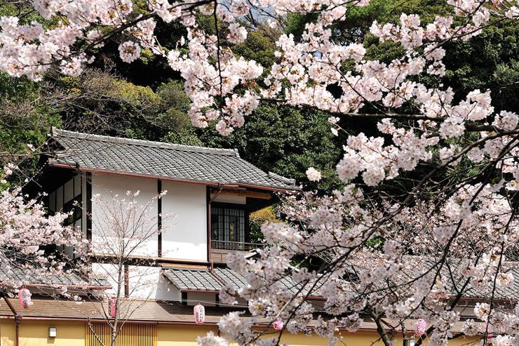 Hotel Chinzan-so - Le parc de l'hôtel au printemps