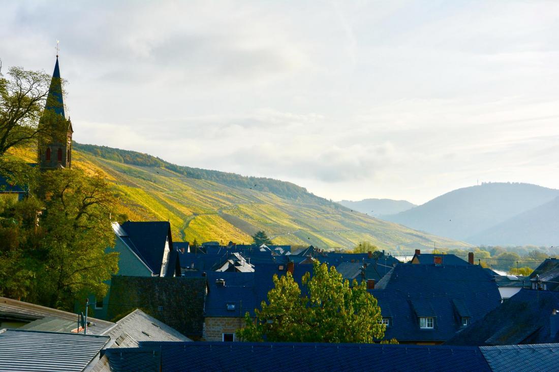 A quelques kilomètres au Nord du Schloss Lieser, la route pittoresque des vins de Moselle.