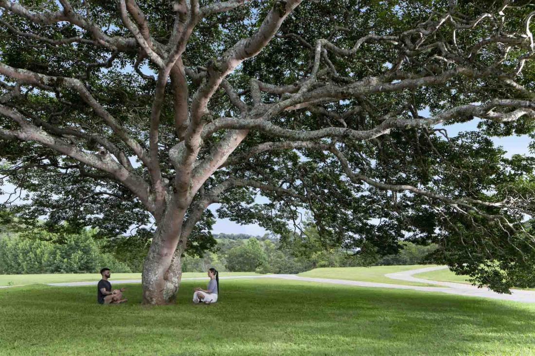 La nature qui entoure l'hôtel est propice à des activités multiples en plein air
