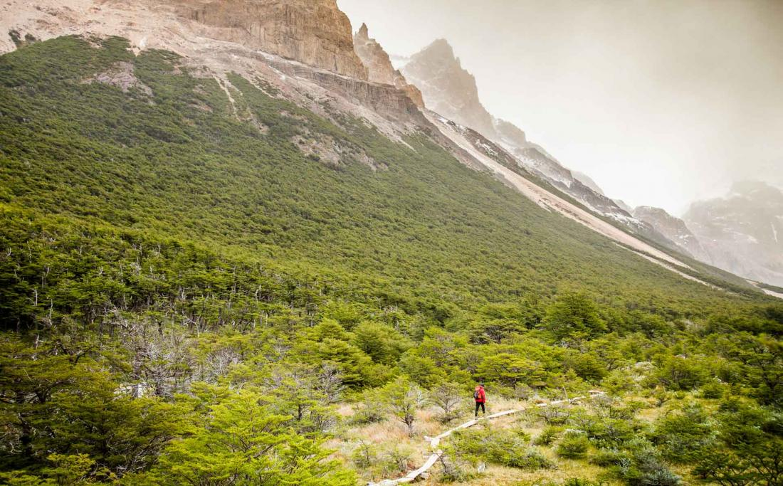 La réserve Los Huemules où se trouve El Chaltén possède 25 kilomètres de sentiers balisés