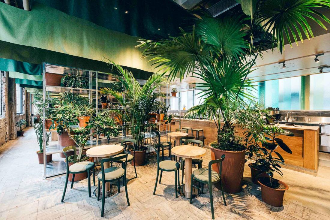 Le café et le lobby se mêlent au milieu des plantes vertes