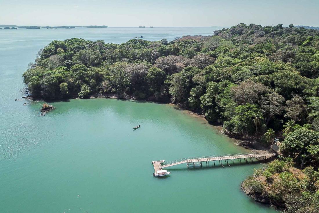 Cette île sauvage du golfe de Chiriqui a su conserver un environnement unique, où la nature est souveraine.