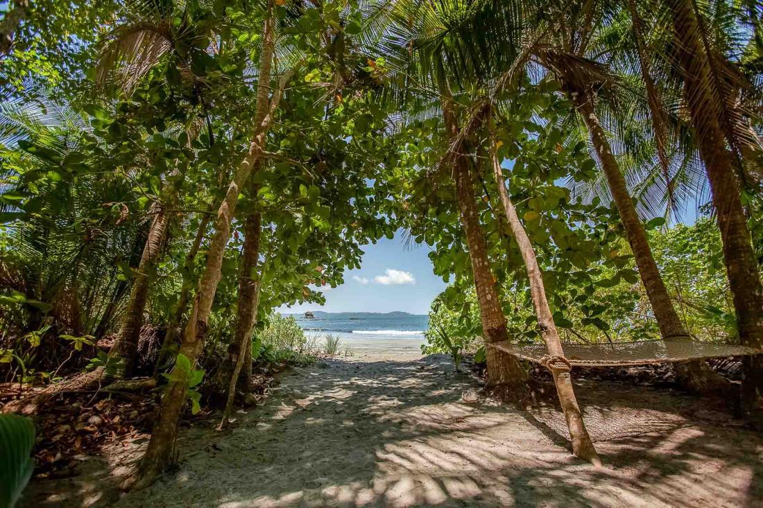 Isla Palenque jouit d'un accès direct à une plage paradisiaque, avec des eaux turquoise à perte de vue…