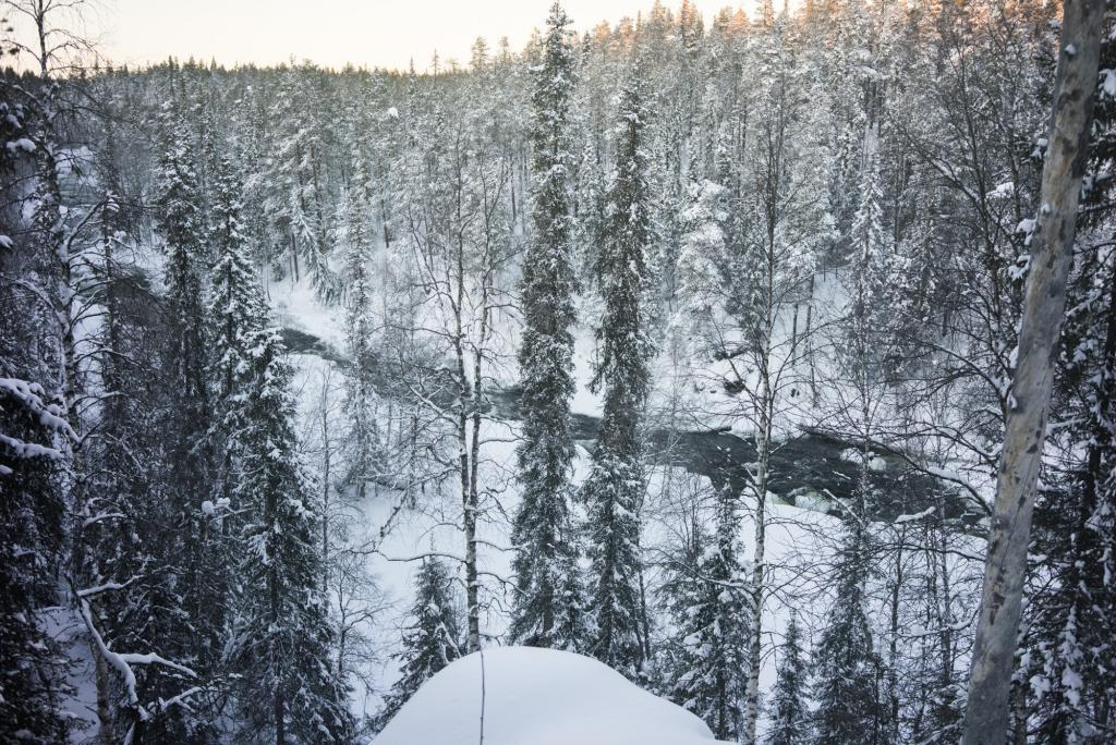 Parc national d'Oulanka.