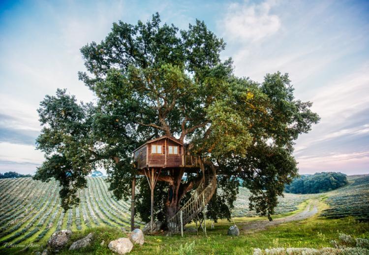 Les 15 plus beaux hôtels cabanes en France & Europe
