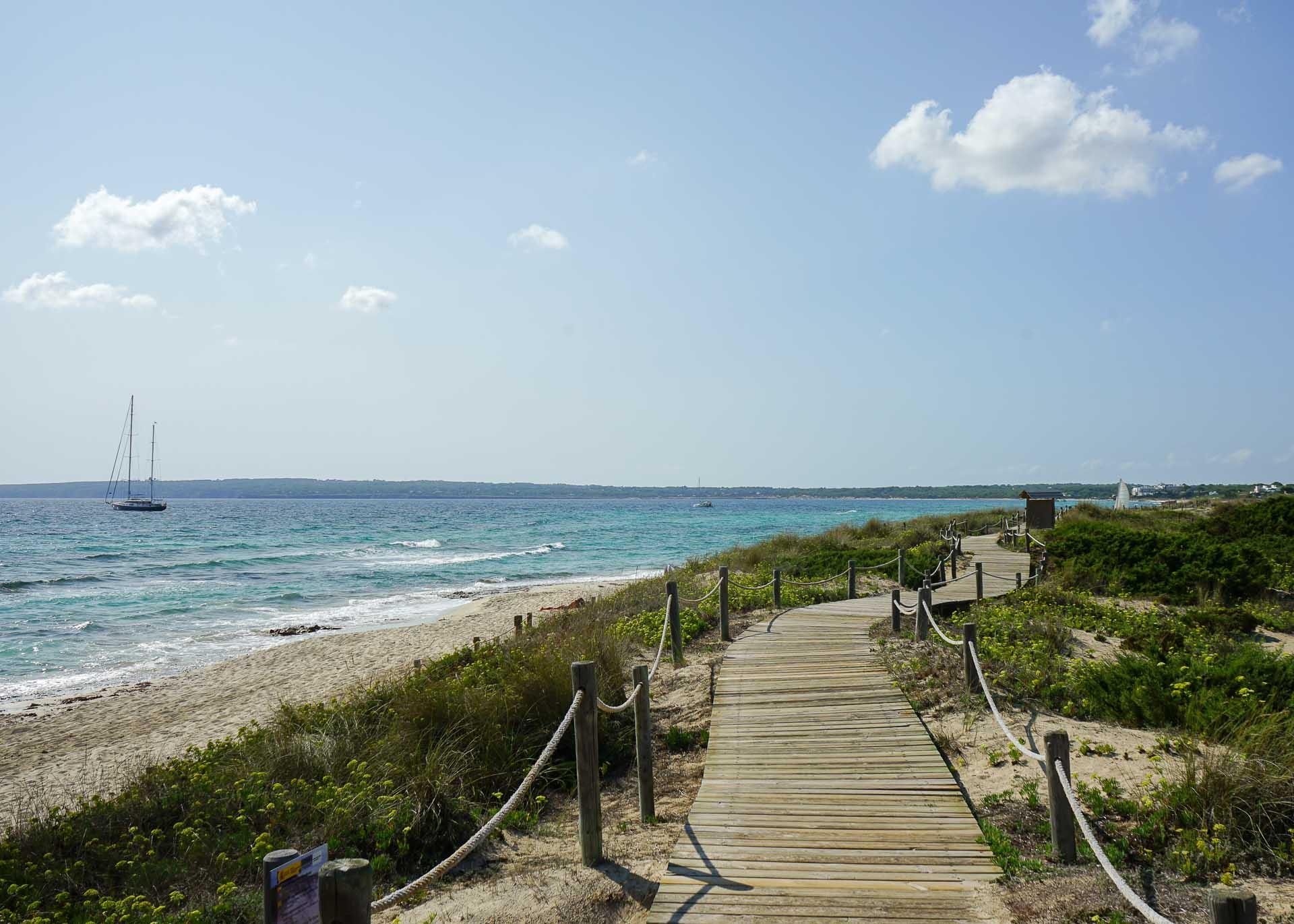 Un sentier longe la plage de Migjorn sur la côte sud de Formentera © MB   YONDER.fr