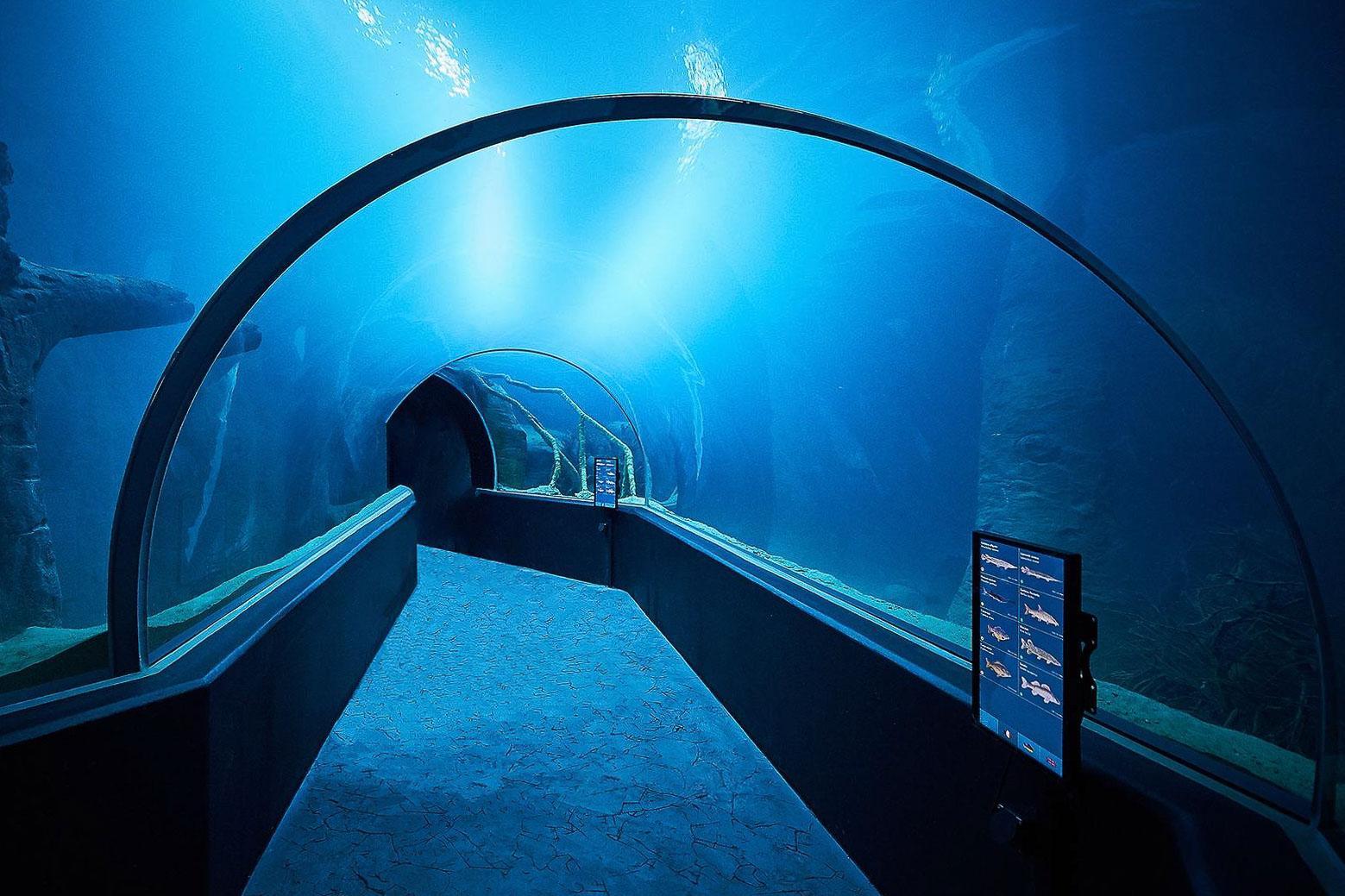 Aquatis – Lausanne © DR