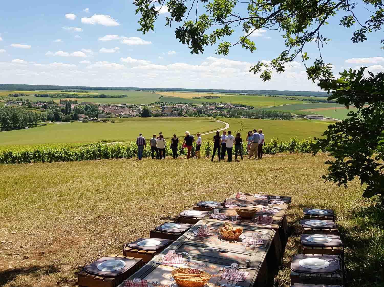 Repas en haut des vignes après une visite © Delphine Dumont