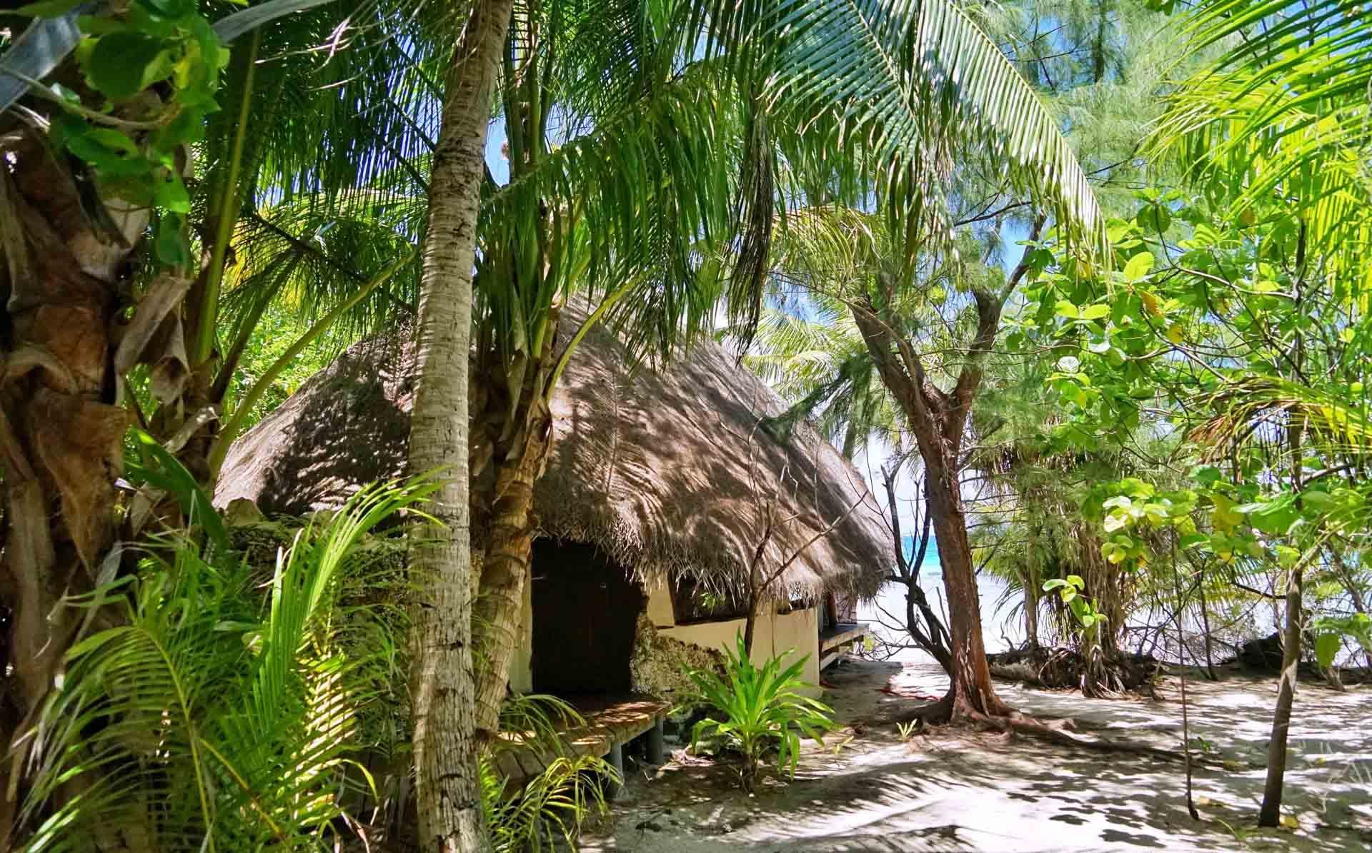 Mener la vie de Robinson sur Tikehau, l'une des îles des Tuamotu © Lei Tao
