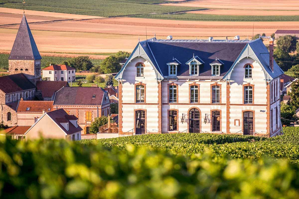 Le Château de Sacy, au milieu des vignes © DR