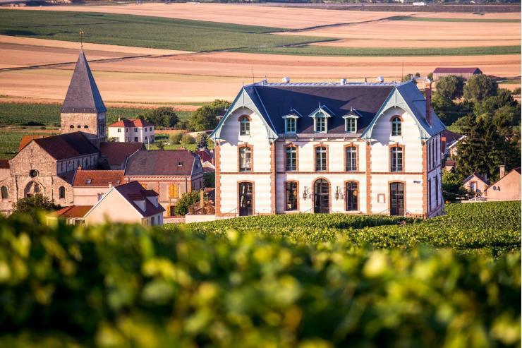 Château de Sacy © Michaël Boudot