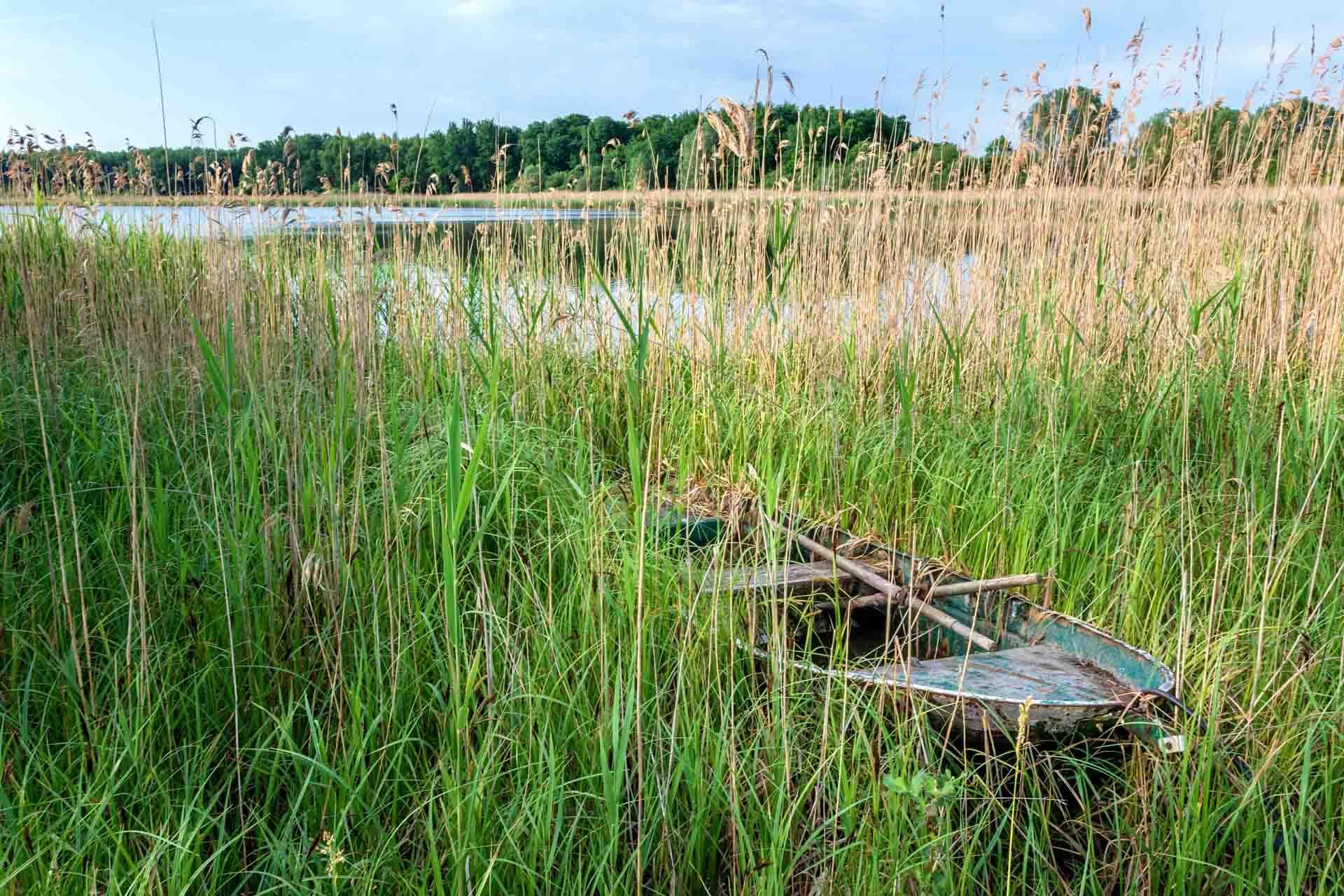 Lac de Madine © PhotoGranary - AdobeStock
