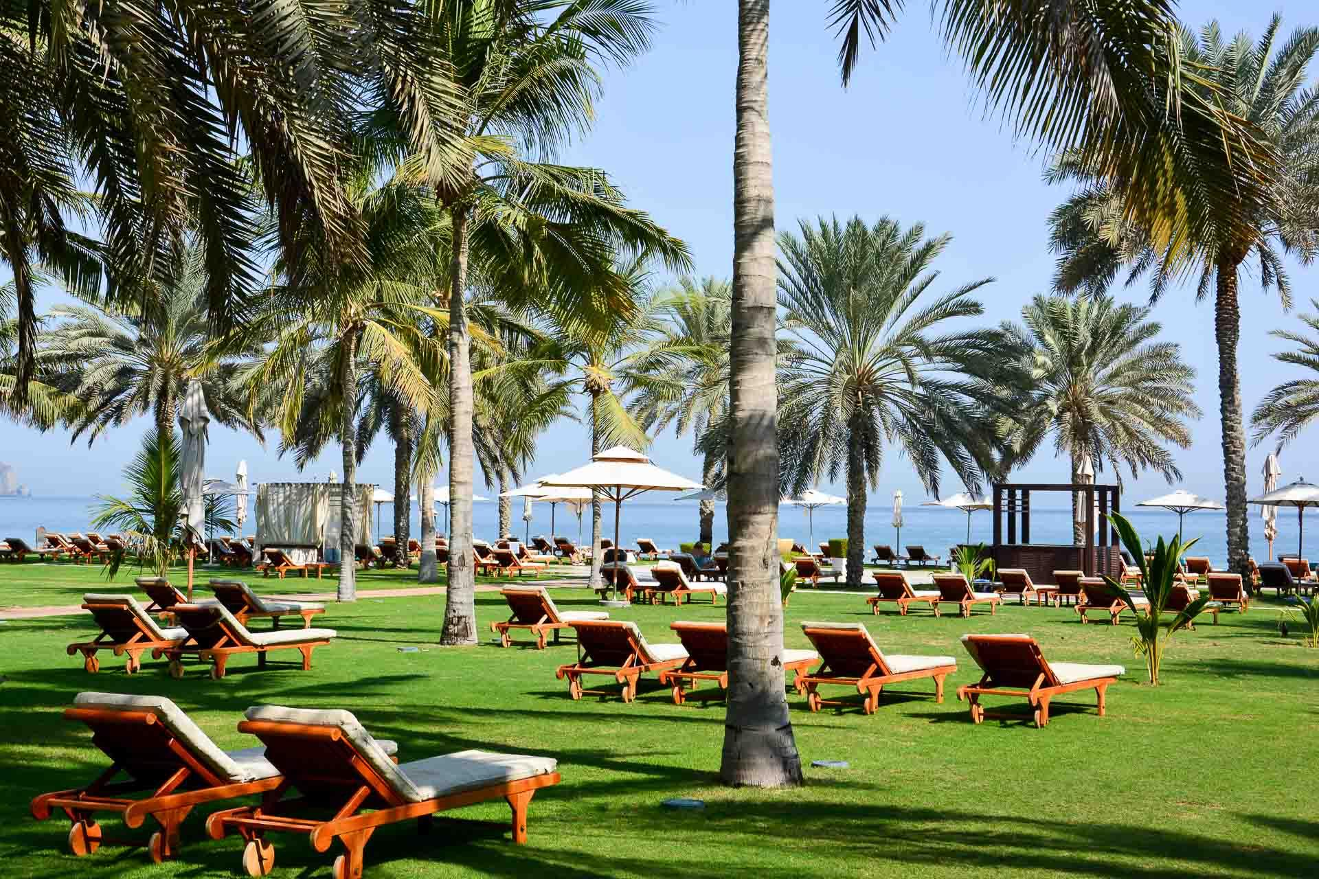 La palmeraie et les jardins du Ritz Al Bustan Palace, en bord de mer. © Emmanuel Laveran.