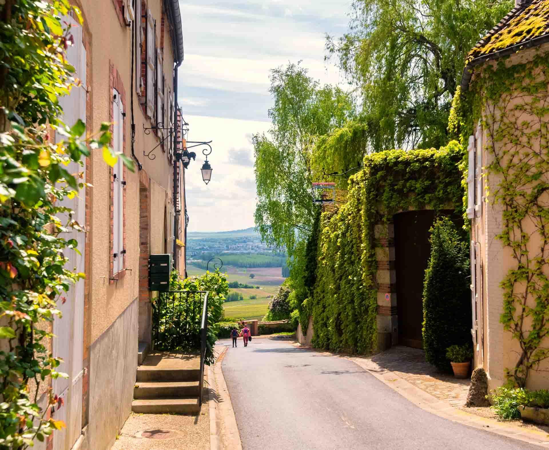 Le village de Hautvillers © adobestock - Luc Cohen