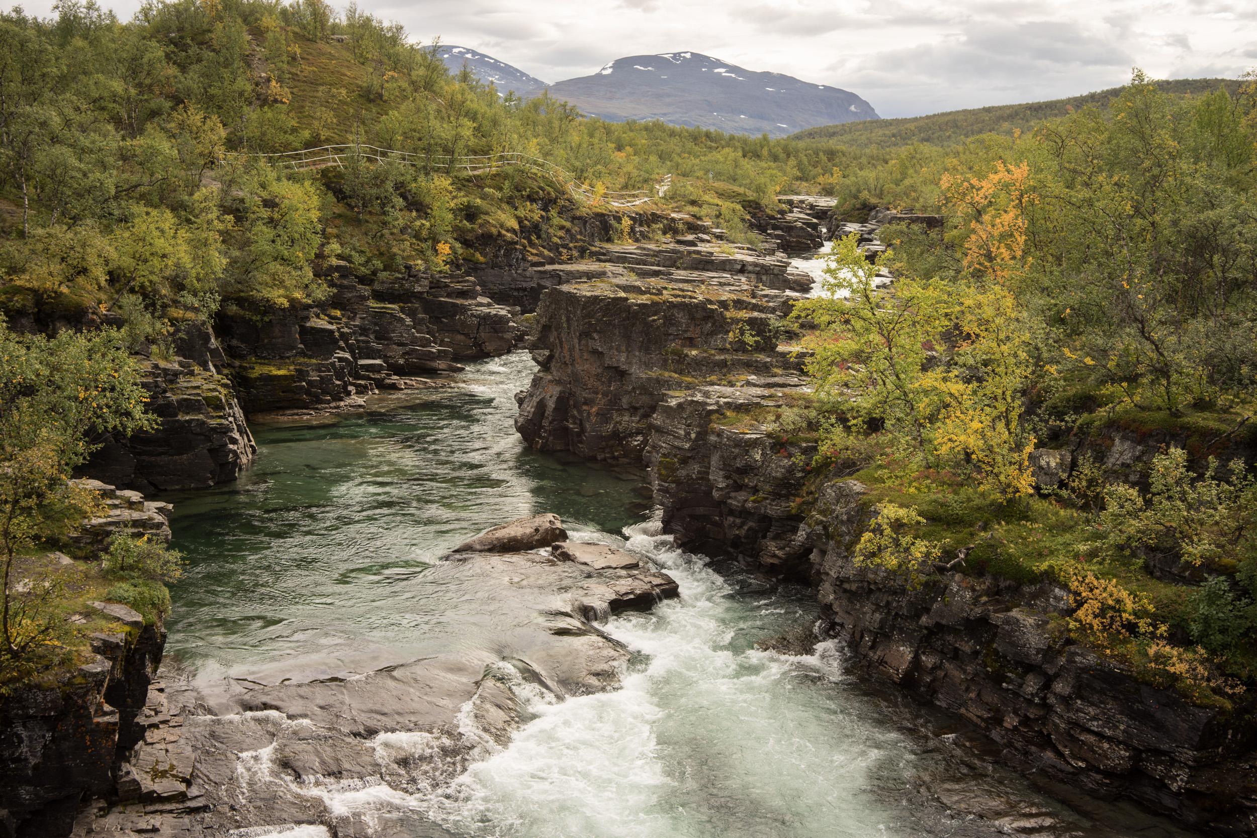 Le fameux canyon creusé par la rivière Abiskojokk. Une balade classique et facile depuis l'Abisko Tourist Station.