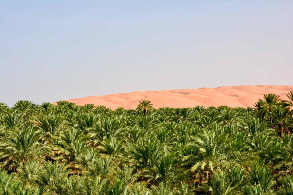 Les paysages d'Oman, vus de la route vers Wahiba Sands. © Emmanuel Laveran.
