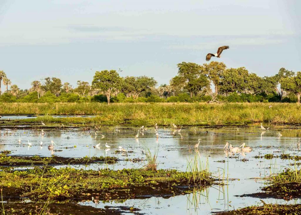 Xigera Safari Lodge, Delta de l'Okavango, Botswana © DR.