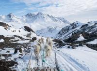 Découverte du Groenland-Est : excursions hivernales autour de Tasiilaq
