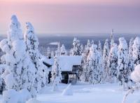 Finlande : 10 expériences à vivre en Laponie cet hiver
