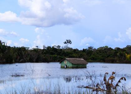 Sombre Amazone - De Juliaca à Porto-Velho (Partie 1)
