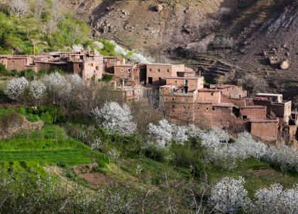 Douar Samra : à la rencontre d'un Maroc authentique dans le Haut Atlas