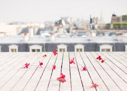 13 des plus beaux rooftops parisiens pour les beaux jours