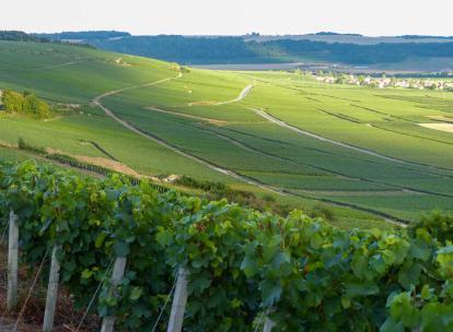 Vallée de la Marne: week-end aux Portes de la Champagne