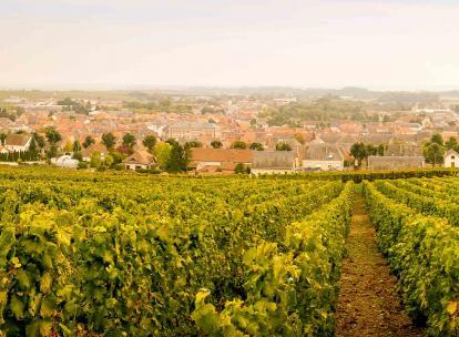 Un week-end à Épernay, capitale du champagne, en 5 activités incontournables