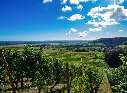 Meuse : 10 idées d'activités nature pour se mettre au vert