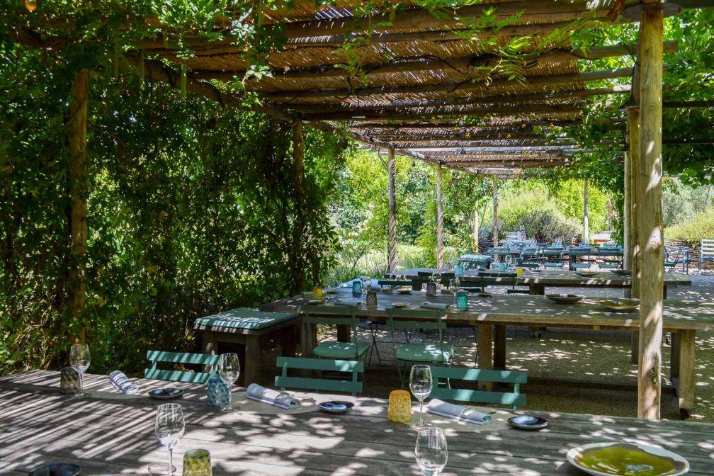 La terrasse ombragée par la vigne © Pierre Gunther