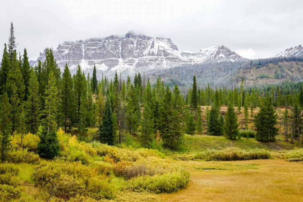 Entre sommets enneigés et plaines verdoyantes, un paysage typique du Wyoming dans la Teton National Forest.