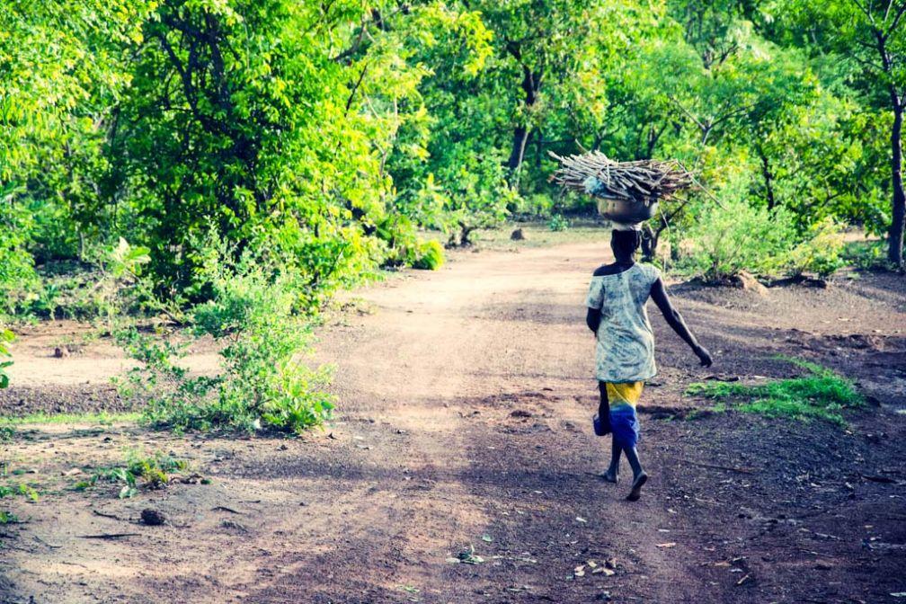 Dans la campagne burkinabé © Antoine Debontride