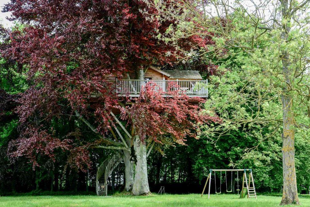 Dans les arbres du parc, une cabane abrite une