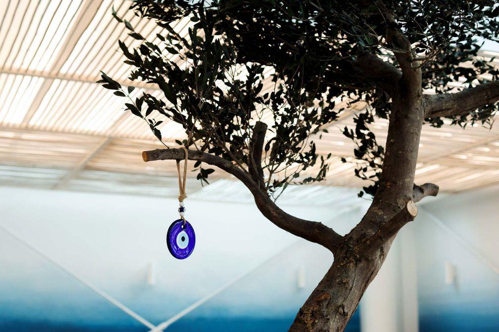 Au centre du restaurant, un véritable olivier © Benedetta Chiala