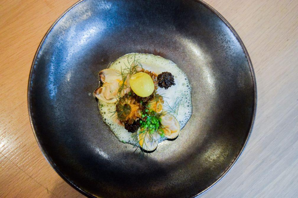 Filet de lieu jaune, coques, morilles, pomme de terre fumée, oseille © Yonder.fr